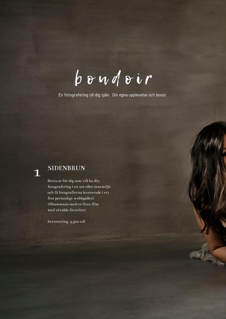 boudoir sidenbrun